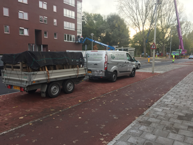 Tuinonderhoud Den Haag Mariahoeve